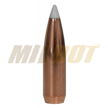 Puntas NOSLER AccuBond calibre .30 - .308 de 180 Grains